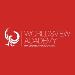 worldsview-consulting